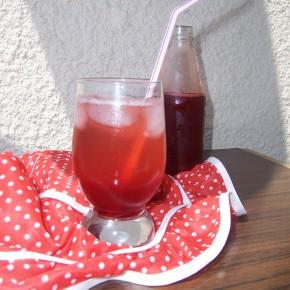 Syrop truskawkowo rabarbarowy